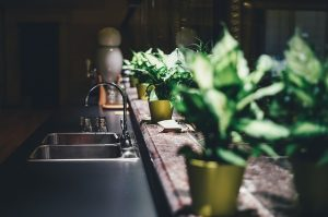 kitchen-plants-greenery